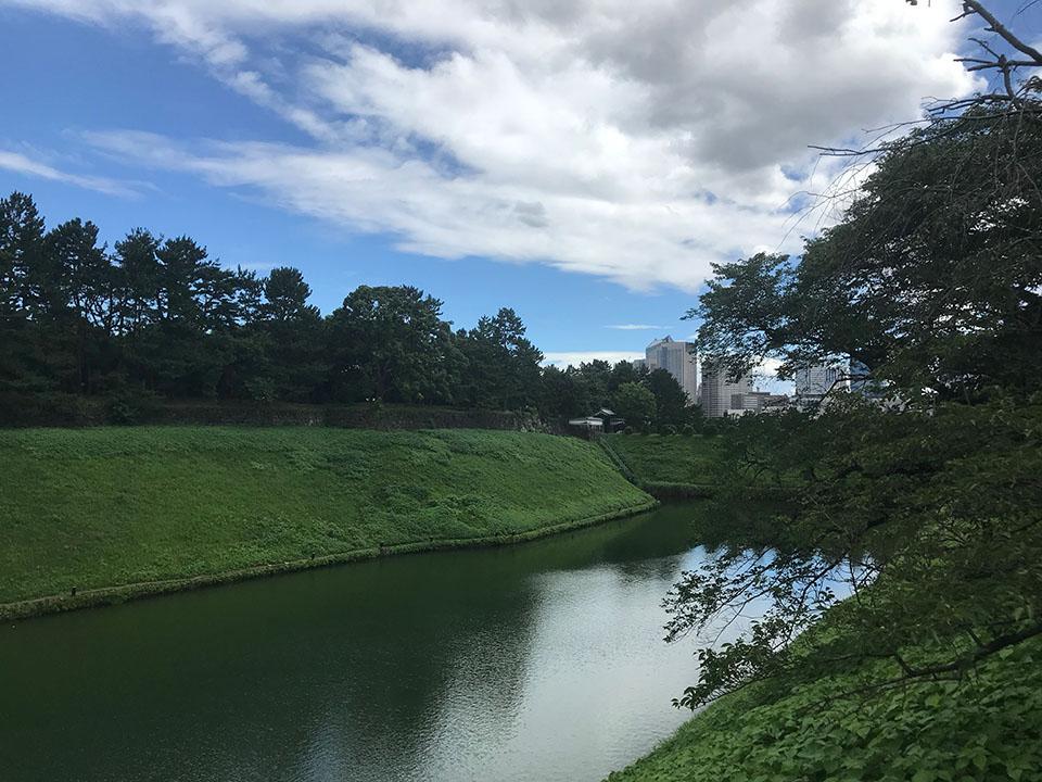 千鳥ヶ淵公園から見た半蔵濠