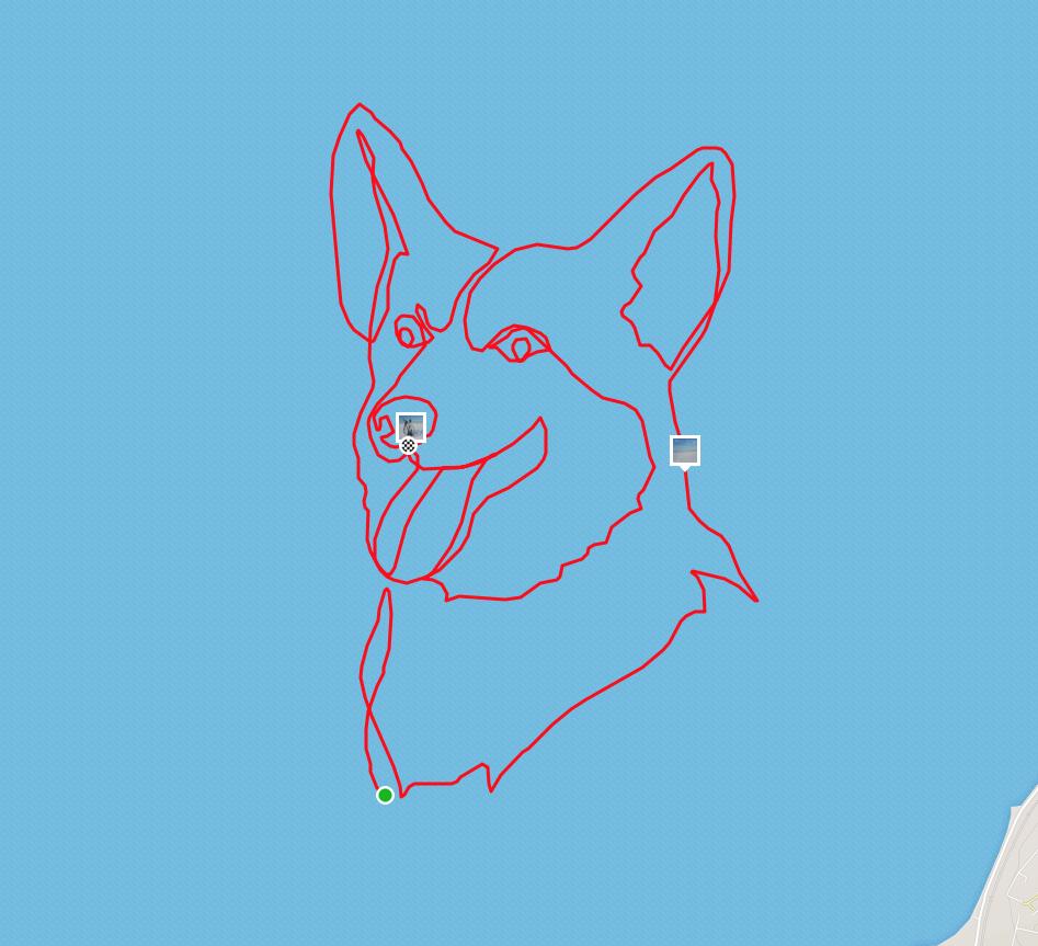 コーギ犬のGPSアート